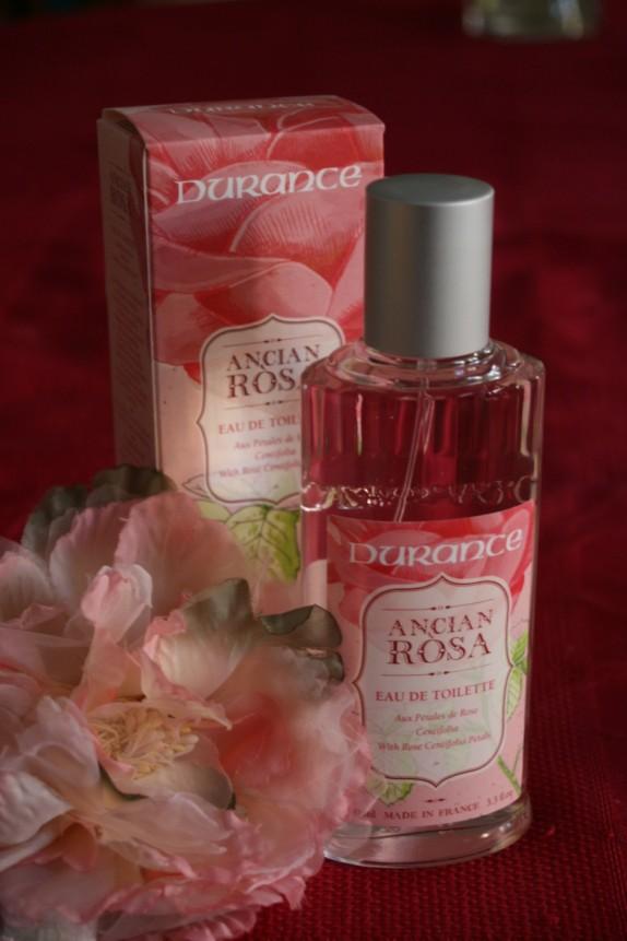 Une rose au charme délicieusement suranné…