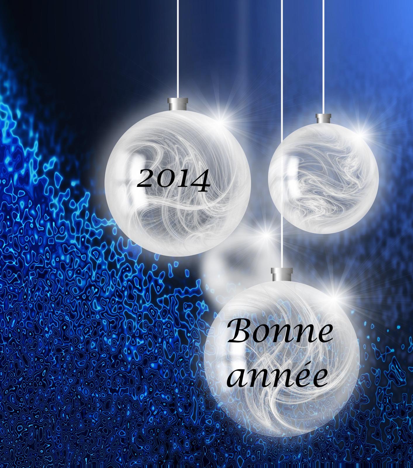 2014 : une nouvelle année pour une nouvelle vie?