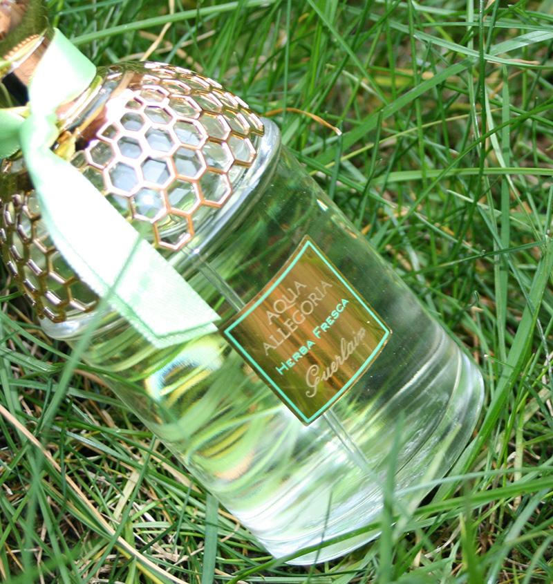 aqua-allegoria-herba-fresca-guerlain