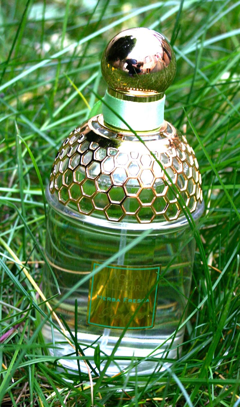 aqua-allegoria-herba-fresca