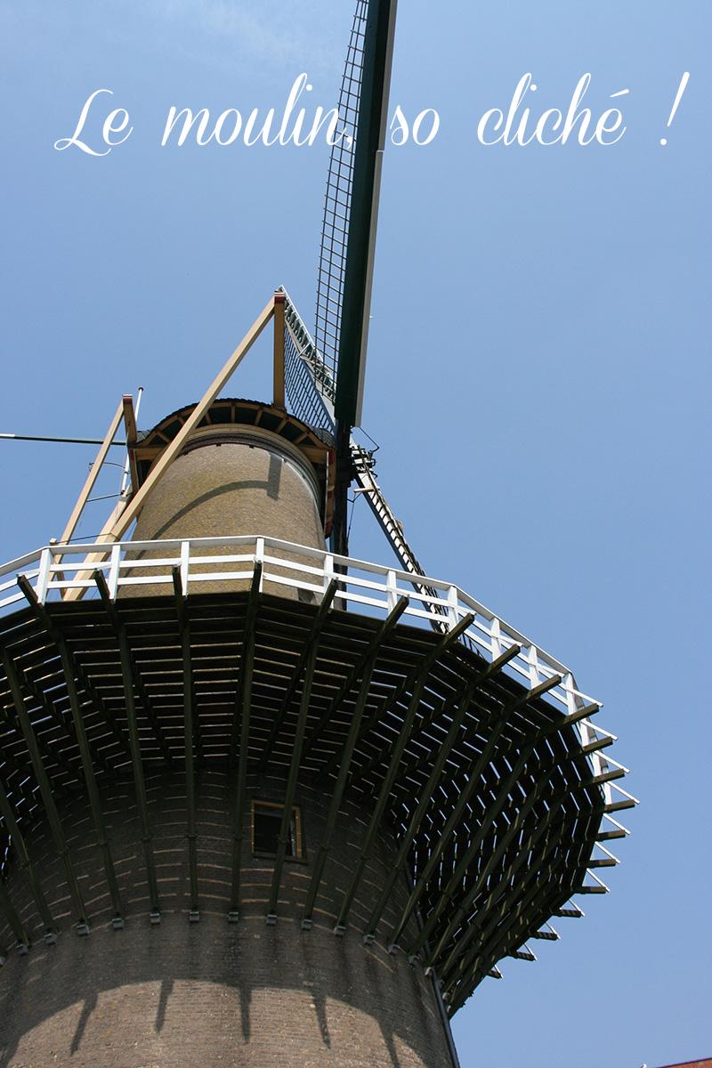 moulin Rotterdam