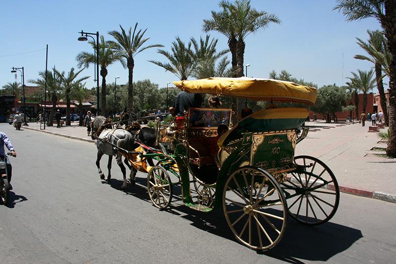 La calèche est très prisée des touristes pour visiter la ville (comme en Egypte à Louxor)