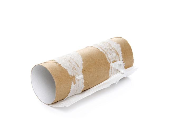 papier toilette vide