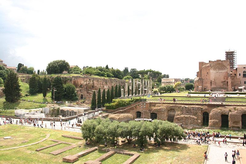 forum latin