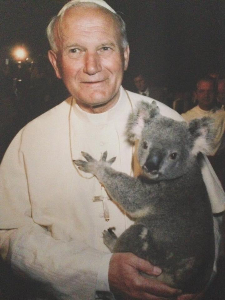 je trouvais la photo (dans l'expo sur l'Océanie au Vatican) assez amusante... Jean-Paul II et un koala, cocasse, non?
