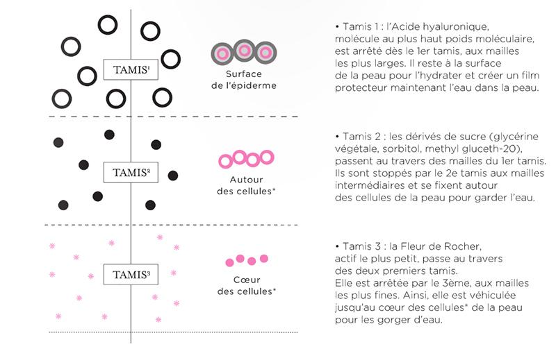principe tamis moléculaire Galenic