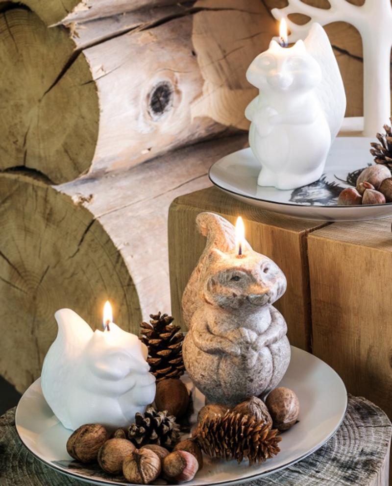 bougies-ecureuil