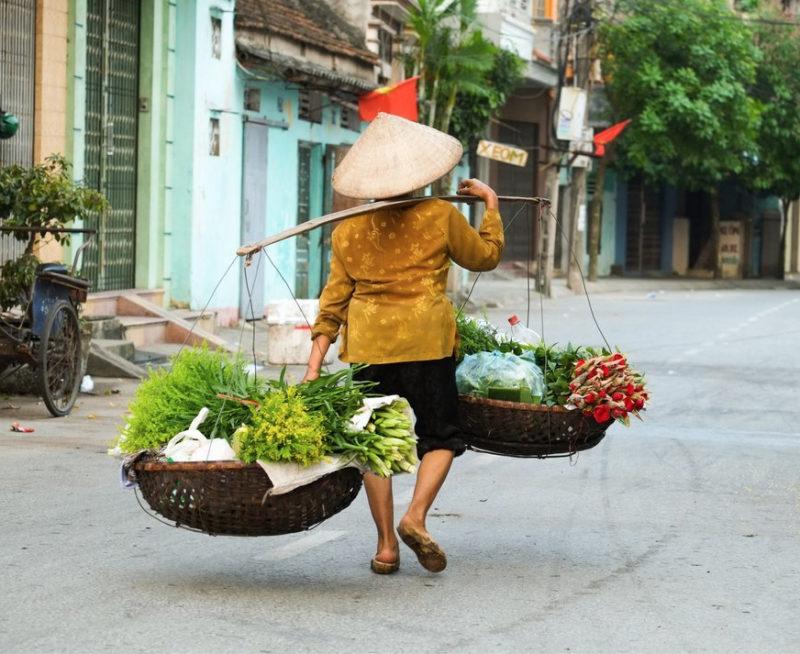 nos curieux voyageurs box vietnam