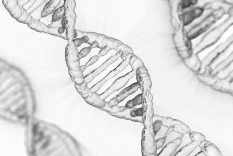 epigenetique et regime