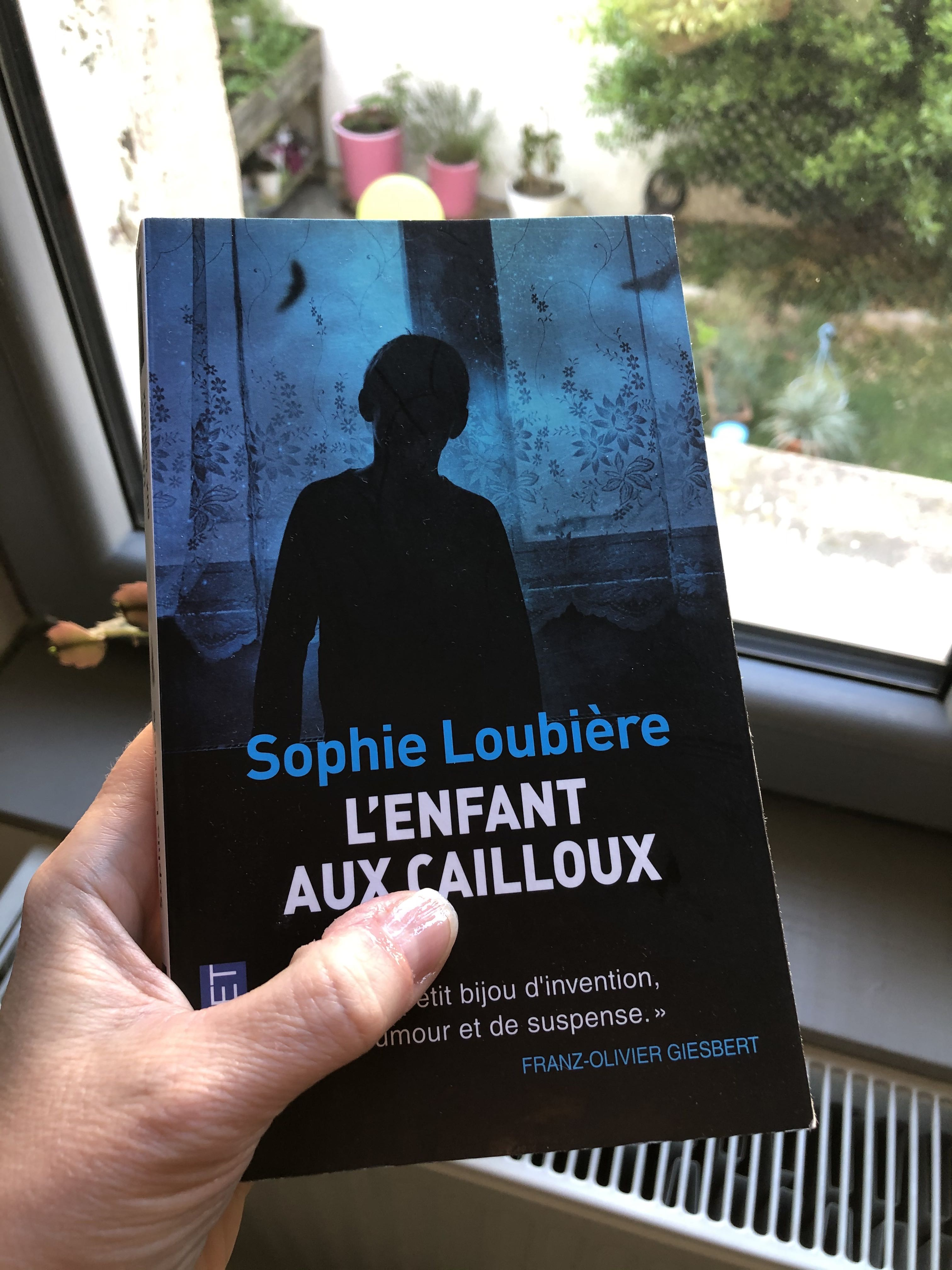 [Lecture] L'enfant aux cailloux, de Sophie Loubière